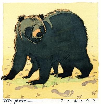 tarot_19_bear2
